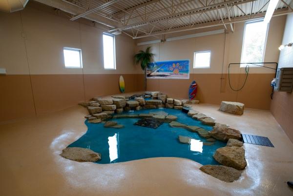 Gorgeous new pool